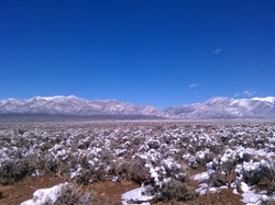 Taos mesa sage and snow